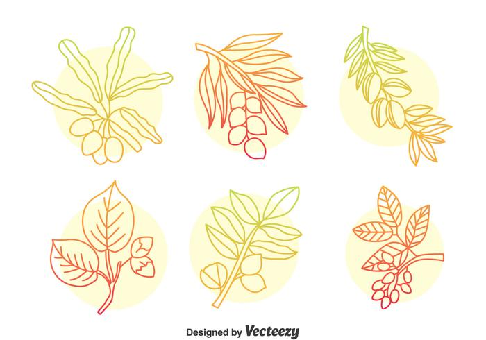 Ensemble de vecteur à motifs à base de plantes à la main