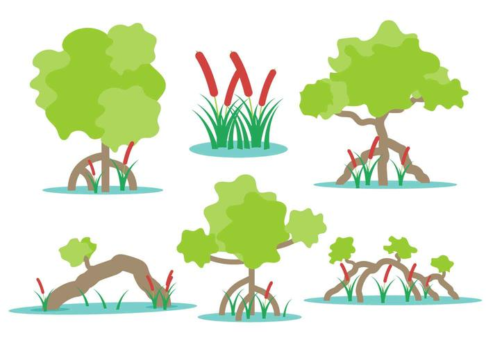 Swamp Vectors