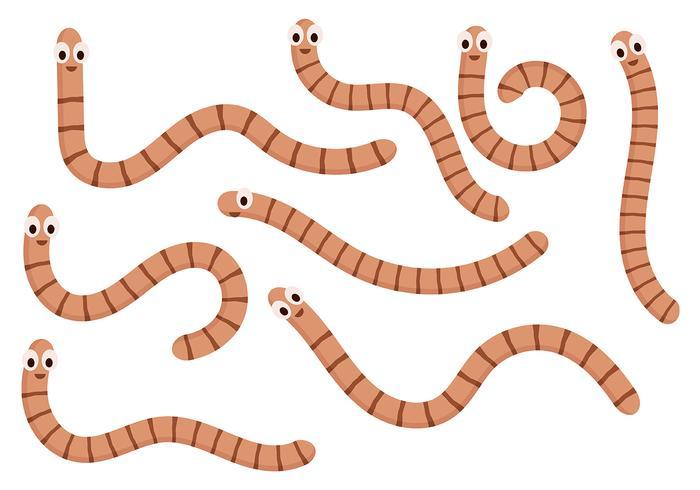 Aardworm Vector 5