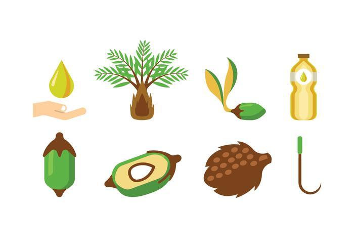 Palm Oil Vectors