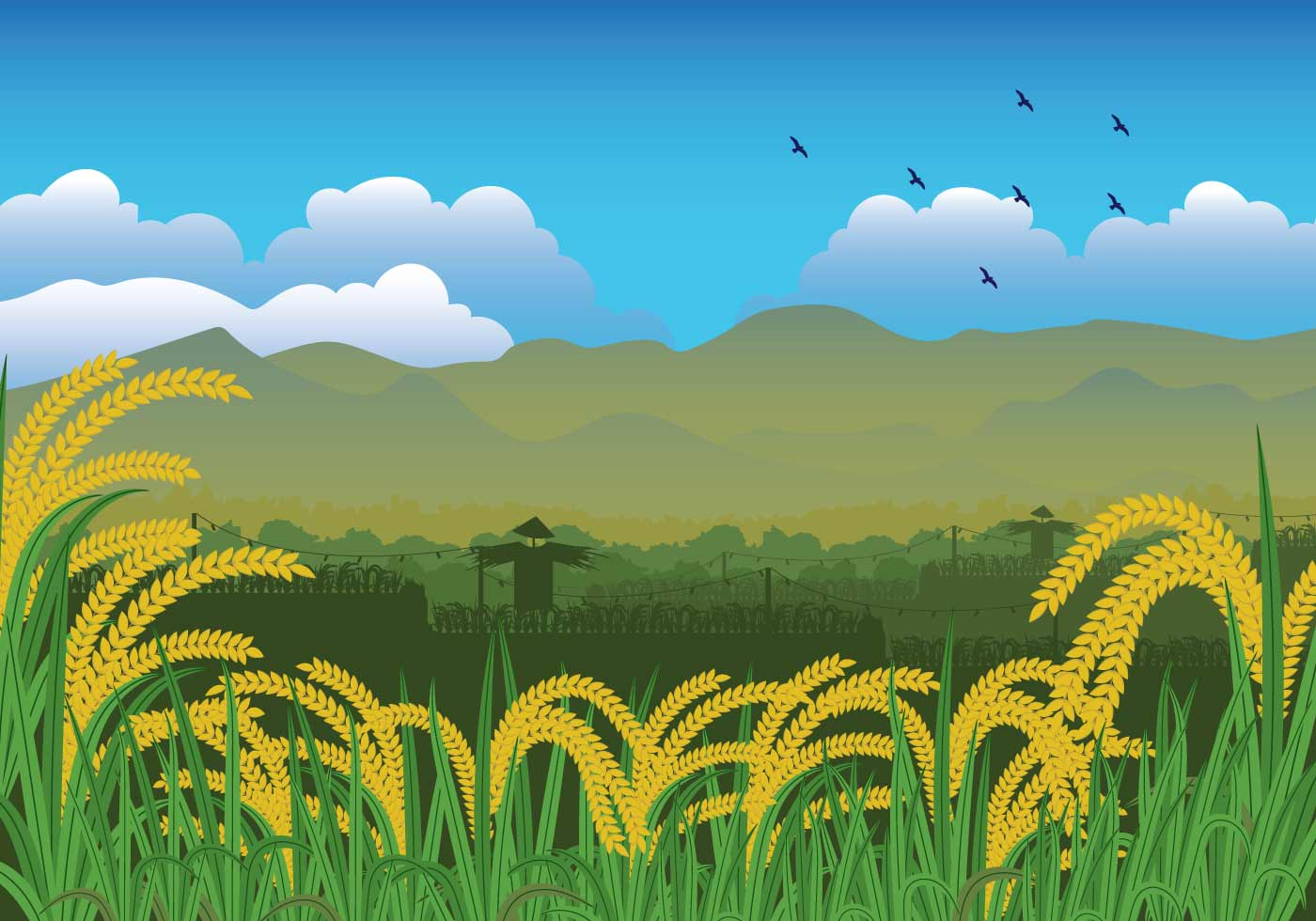 Free Rice Field Illustration Download Free Vector Art