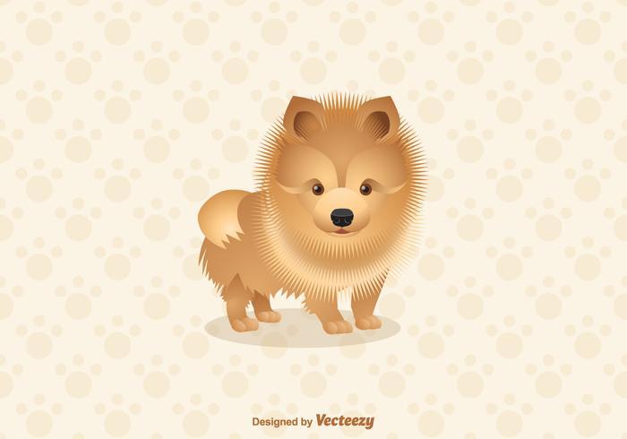 Pomeranian Dog Vector Illustration