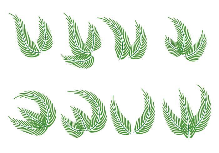 Vecteurs du dimanche des palmiers
