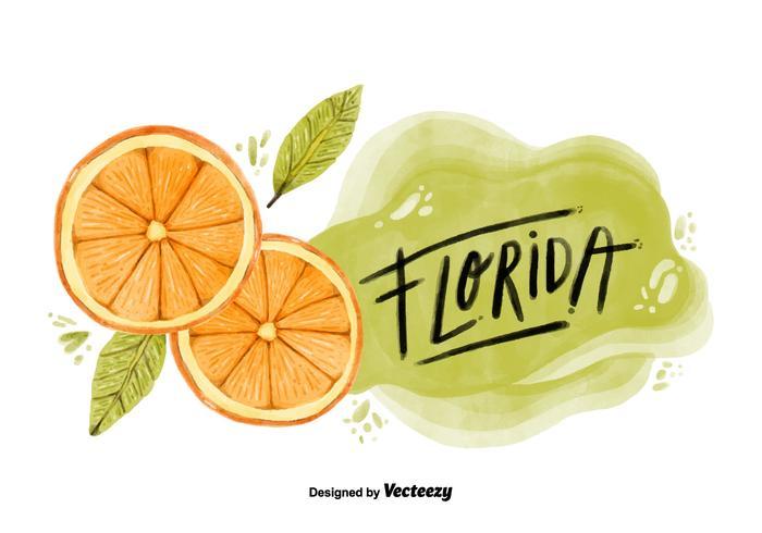 Florida Orange County Watercolor Vector