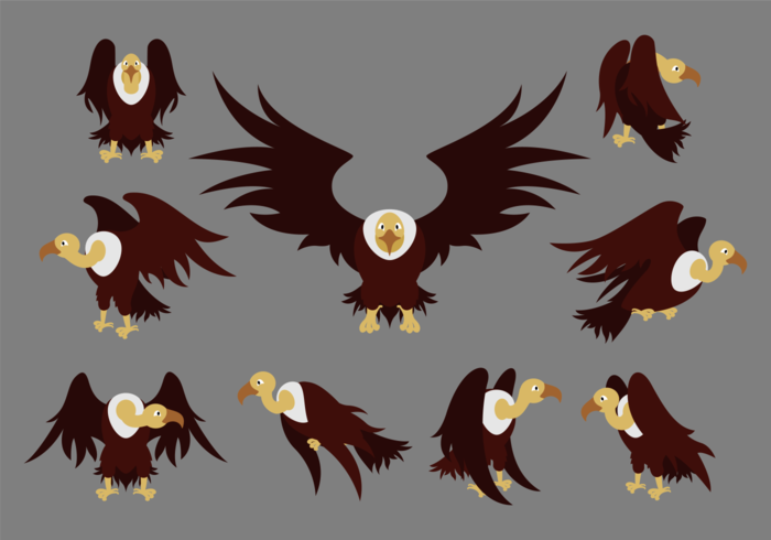 Condor Cartoon Vectors