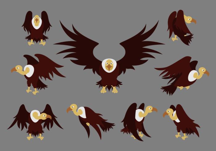 Les vecteurs de dessin animé Condor