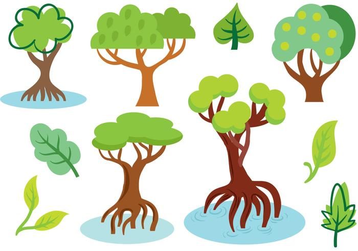 Vettori di mangrovie gratis