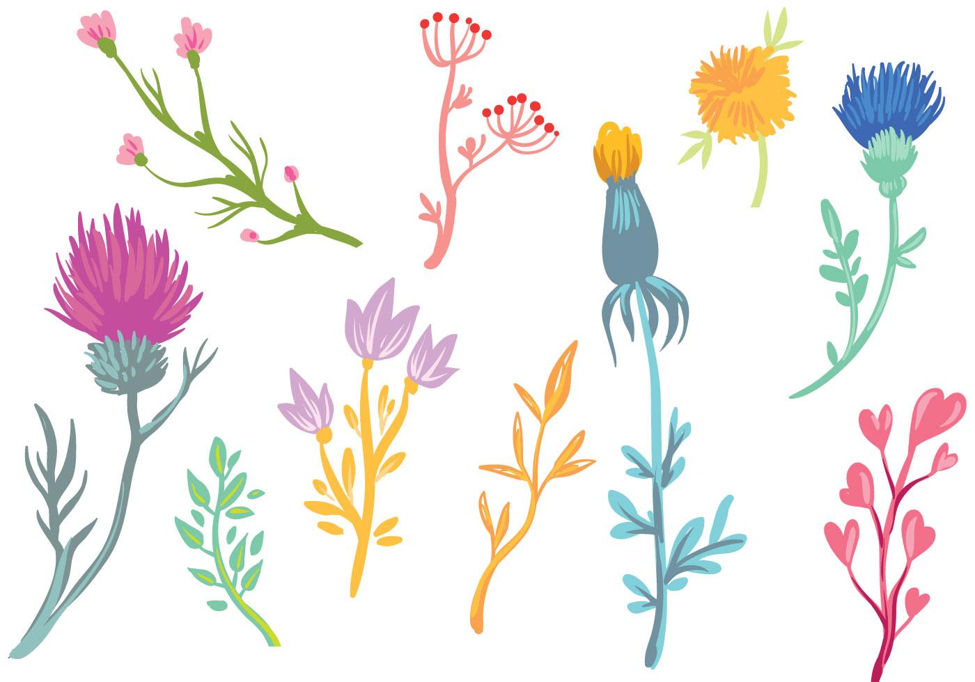 Wildflowers Free Vector Art - (8072 Free Downloads)