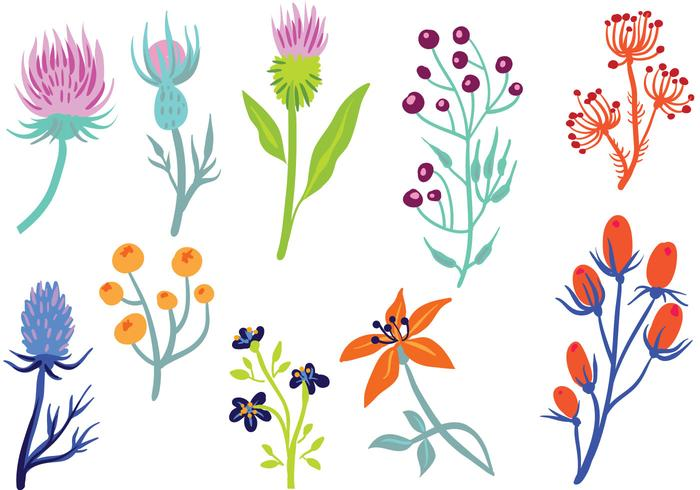 Free Wildflower 2 Vectors