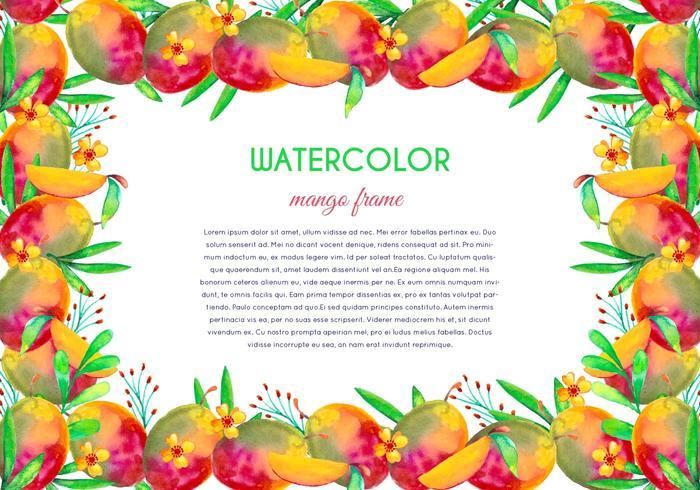 Free Vector Watercolor Mango Illustration