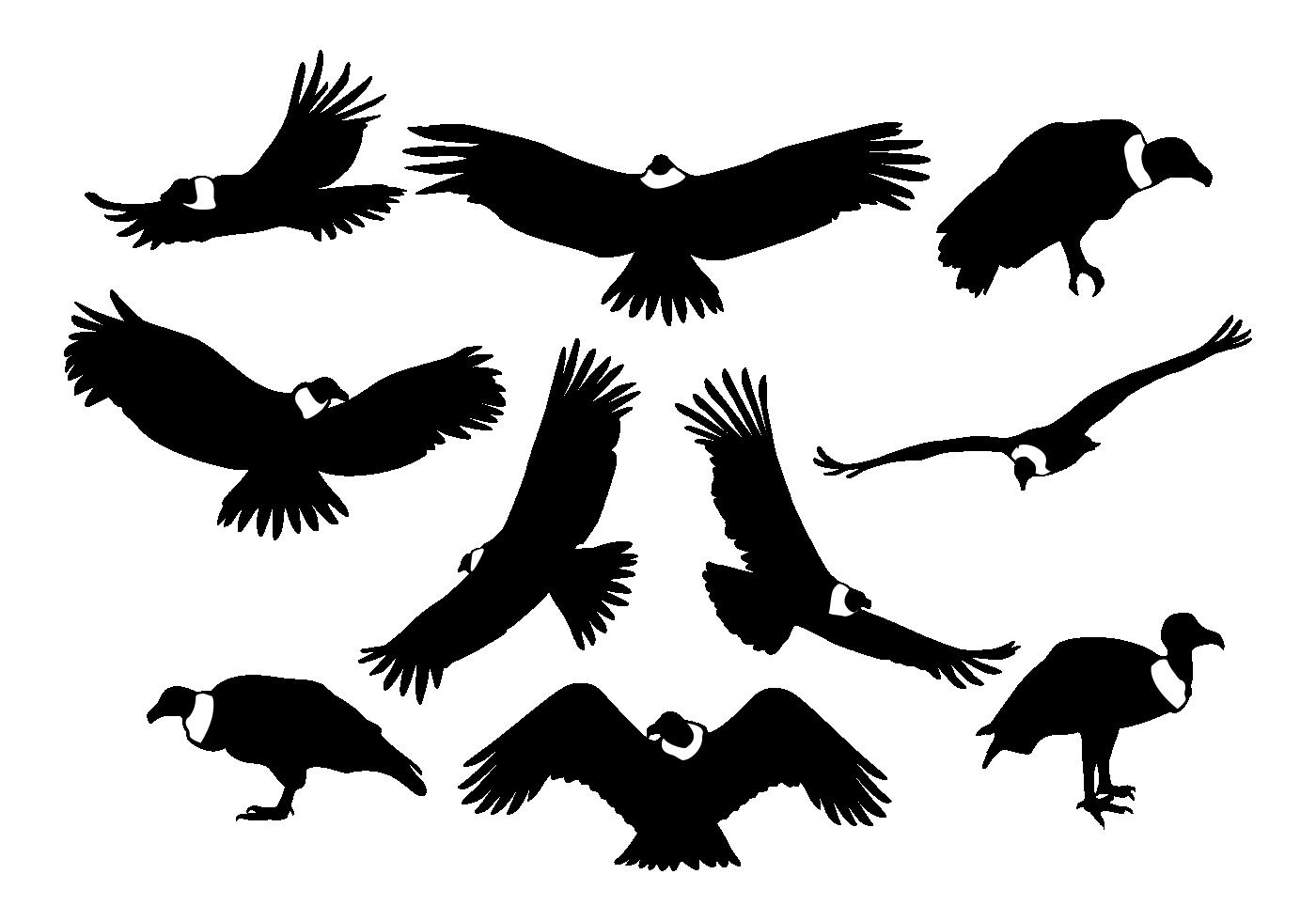 condor silhouettes vector download free vector art