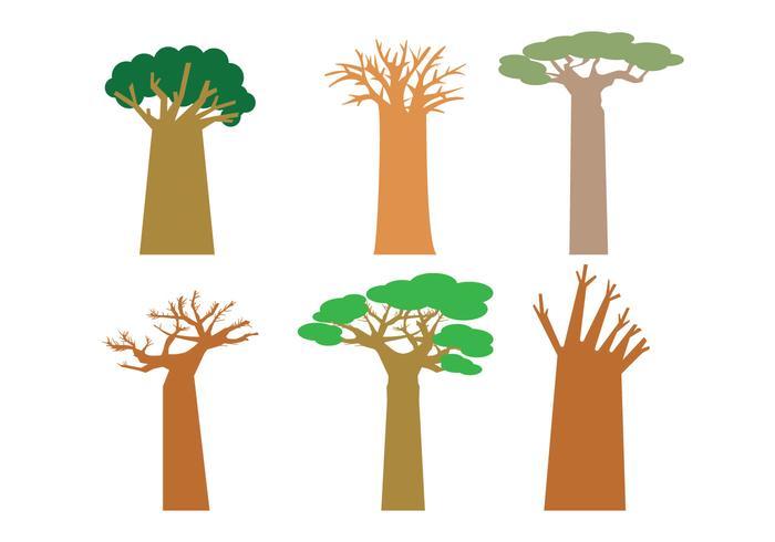 Baobab vektor