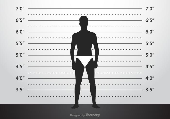 Free Vector Mugshot Background