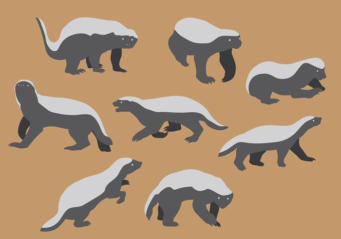 Les Blasons de NRP - Page 7 Free-honey-badger-icons-vector