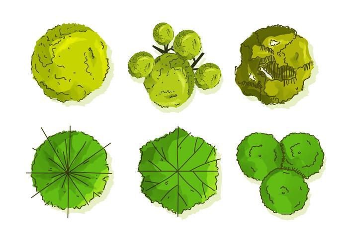 Árbol Tops Vectores