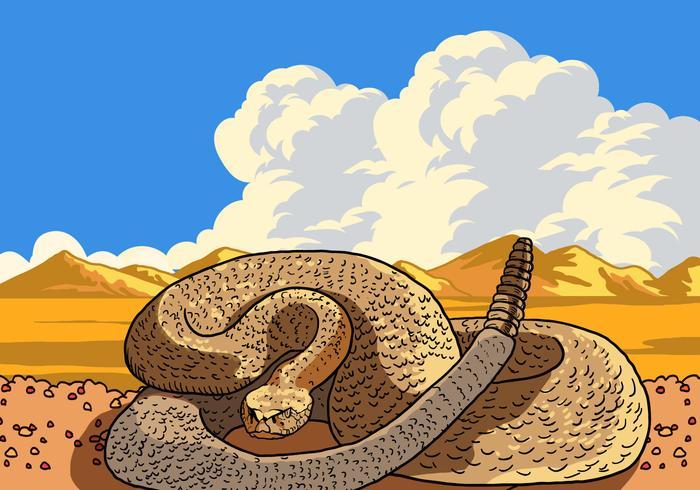 Rattlesnake curled vektor