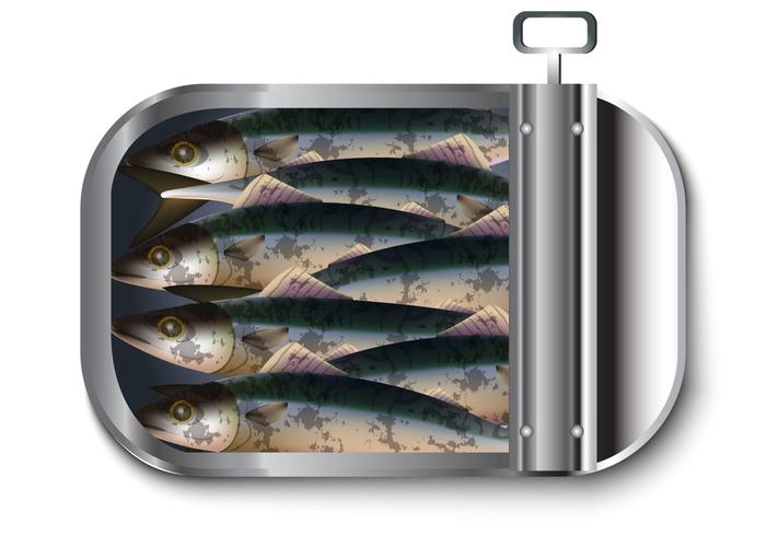 Makrellvektor