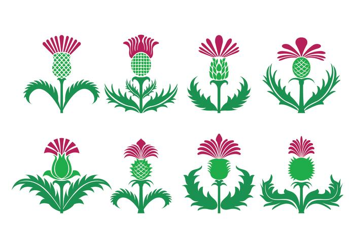 Thistle Vector Icons