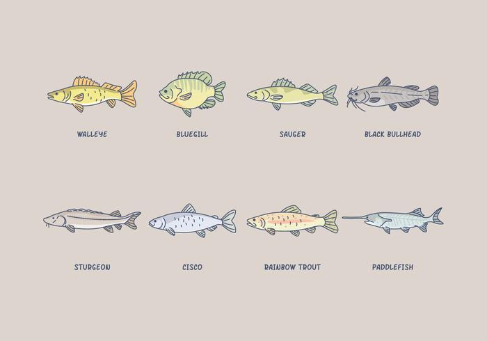 Vecteur de poisson d'eau douce gratuit