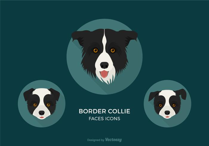 Free Border Collie Faces Vector Icons