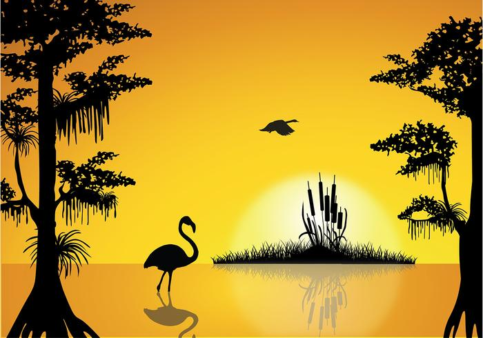 Swamp Sunset Free Vector