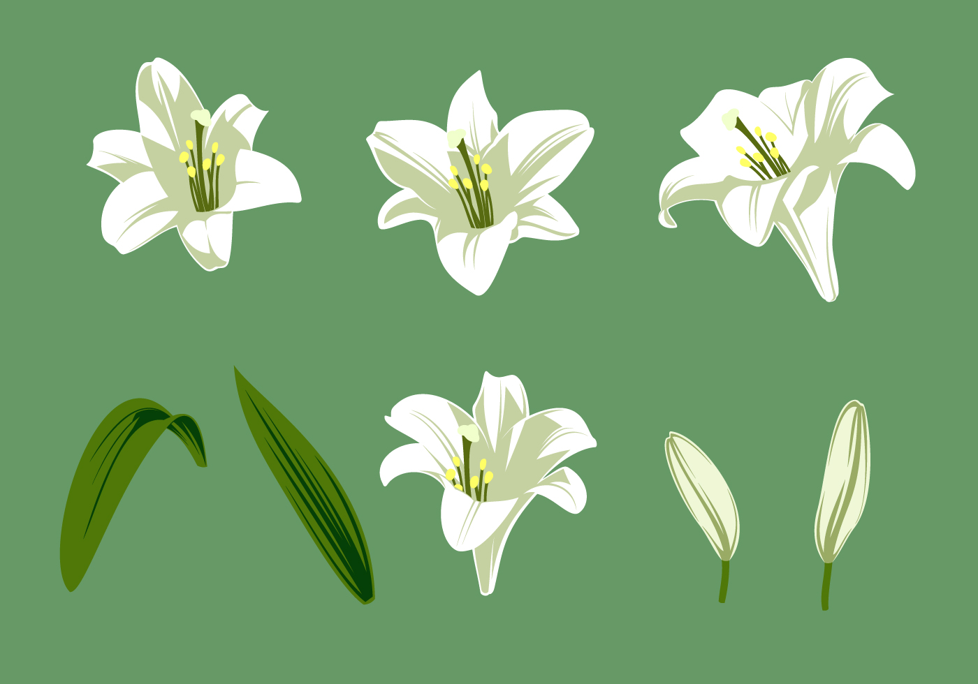 easter lilies free clipart - photo #43