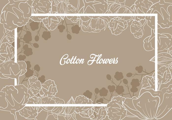 Cotton Flower Illustration