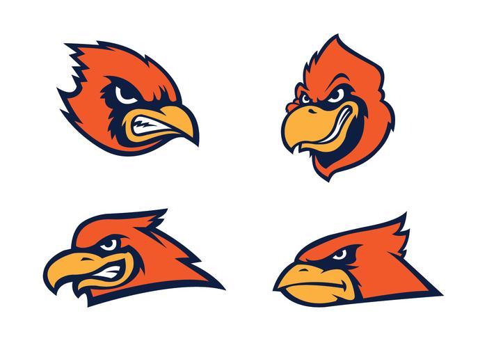 Freier Kardinal Vogel Vektor