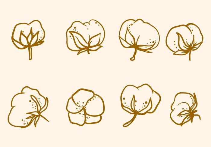Free Hand Drawn Cotton Flower Vector