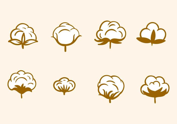 Free Hand Drawn Cotton Flower Vector