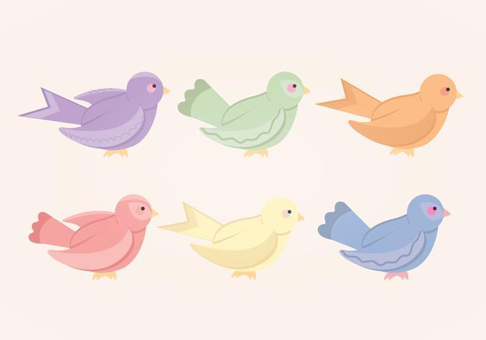 Coleção colorida de pássaros coloridos
