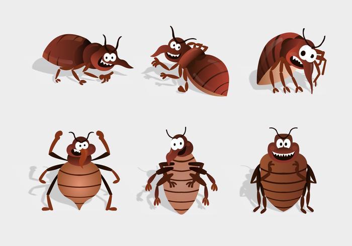 bed bug cartoon character vector