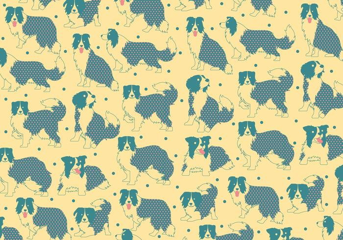 Border Collie Pattern Vector