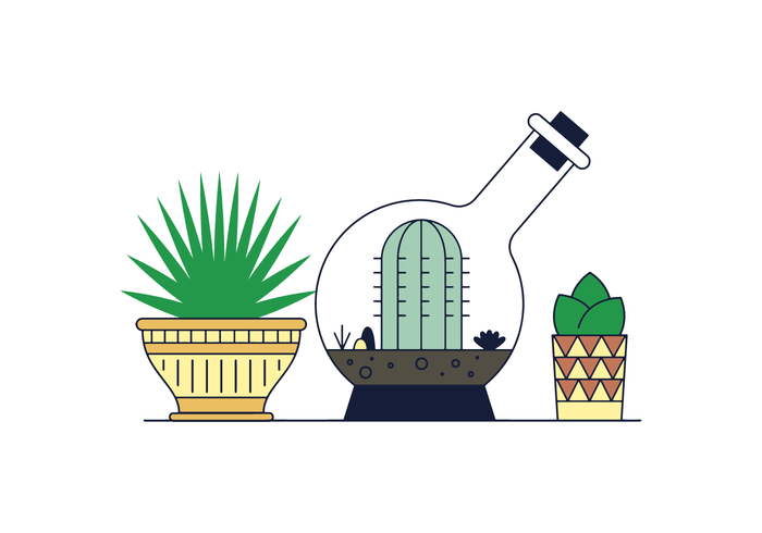 Free Succulents Vector