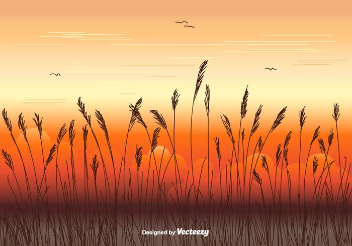 Sea Oats Vector Background