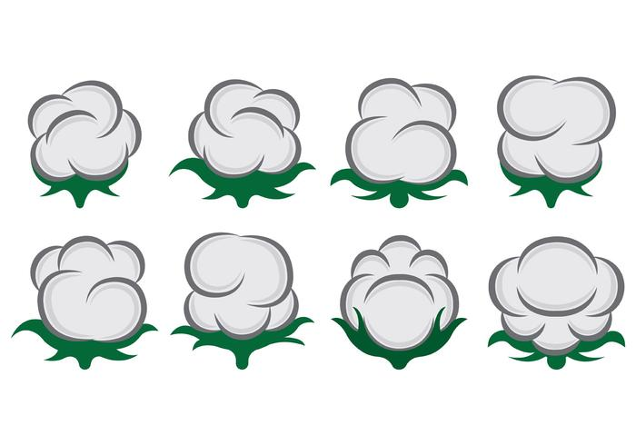Vector Of Cotton Flowers