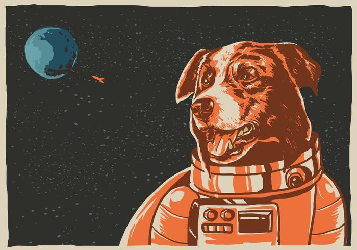 Space Border Collie