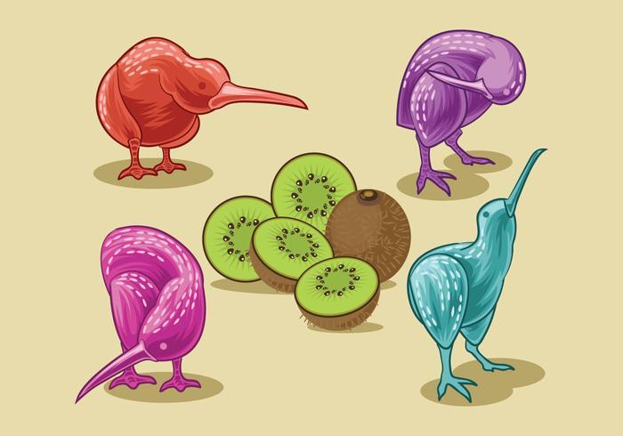 Vector Image of Nice Kiwi Birds and Kiwi Fruits