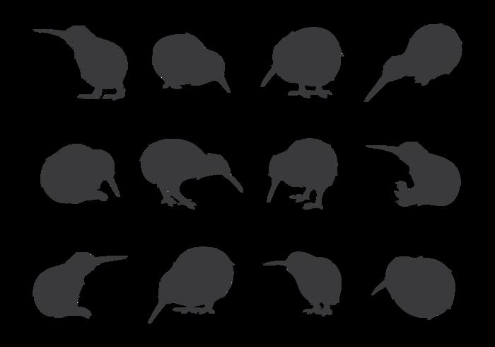 Kiwi Bird Silhouettes  vector