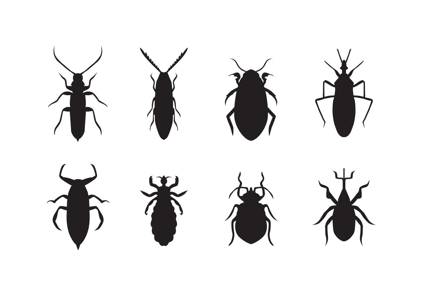 Free Bed Bug Vector Download Free Vector Art Stock