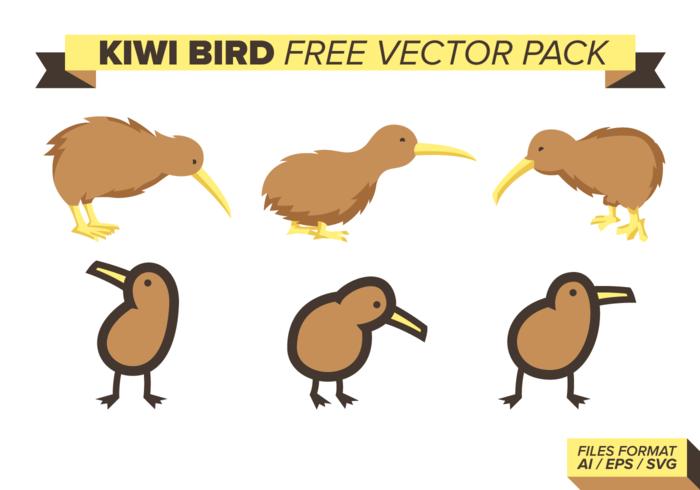 Pacchetto di vettore gratuito uccello kiwi