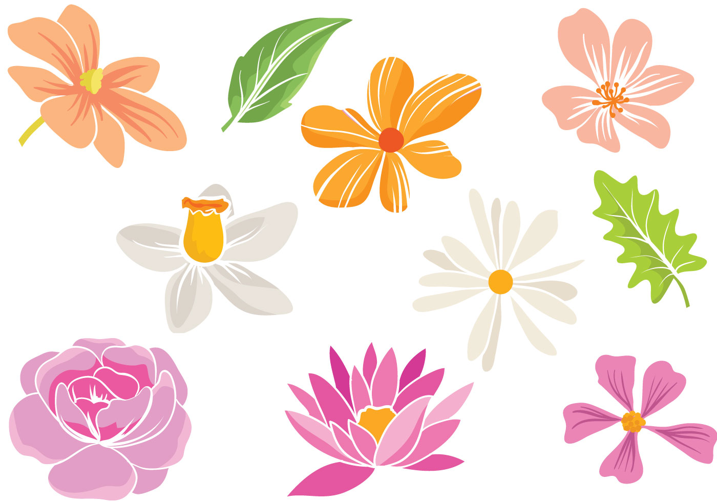 Simple Flower Free Vector Art 12275 Free Downloads