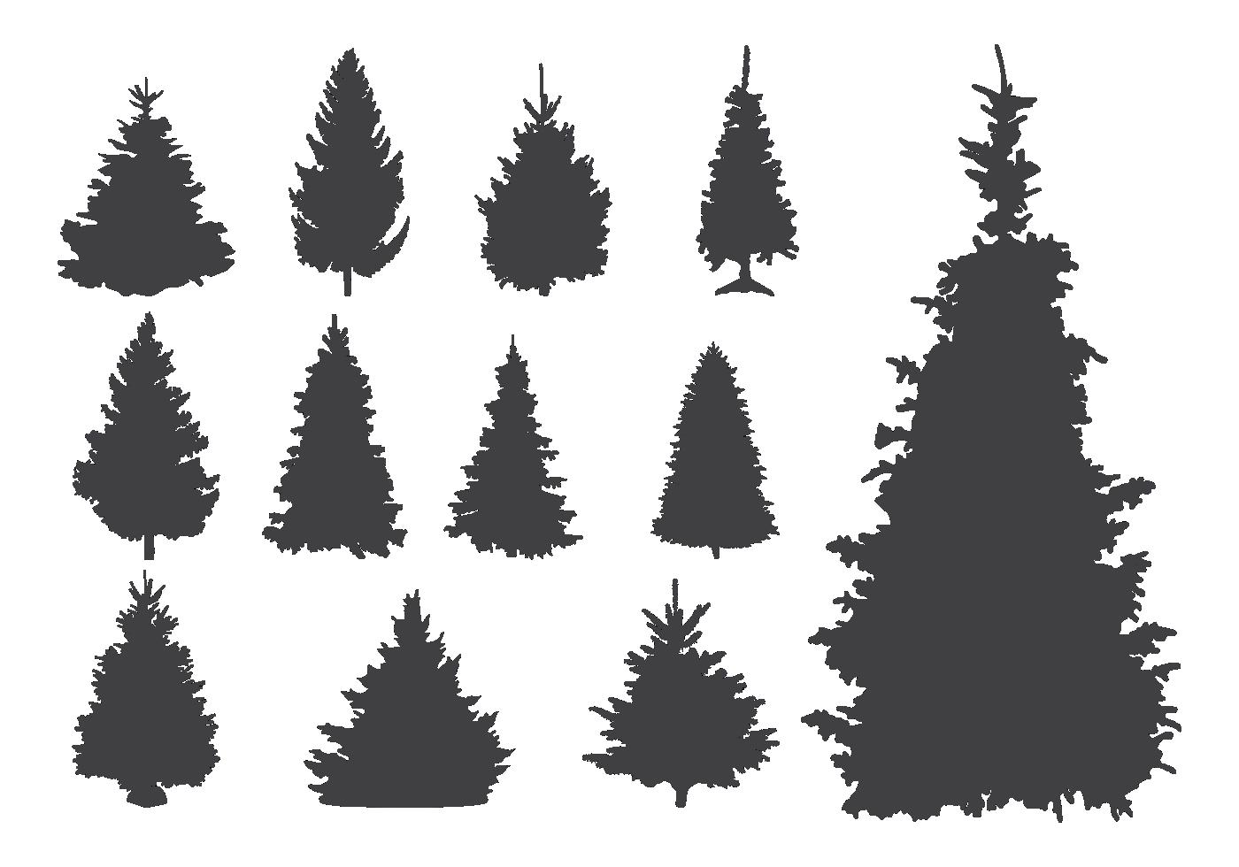 Bare Christmas Tree Svg.Pine Tree Free Vector Art 22 277 Free Downloads