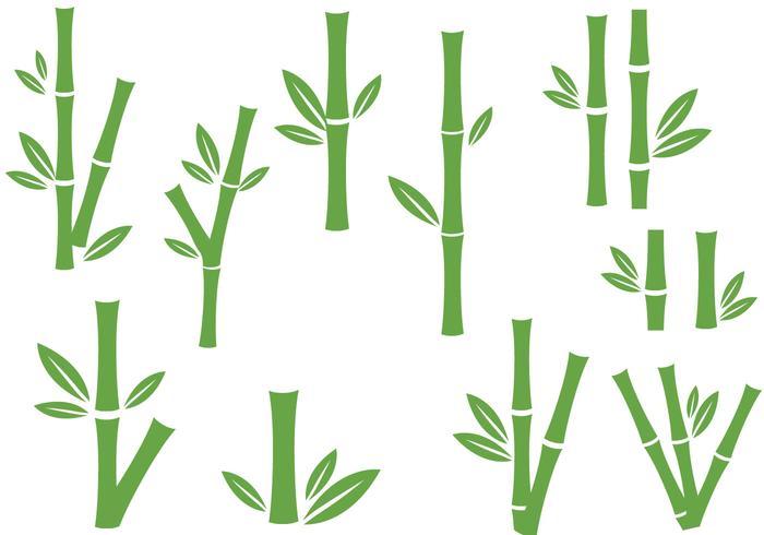 Gratis Bambu vektorer