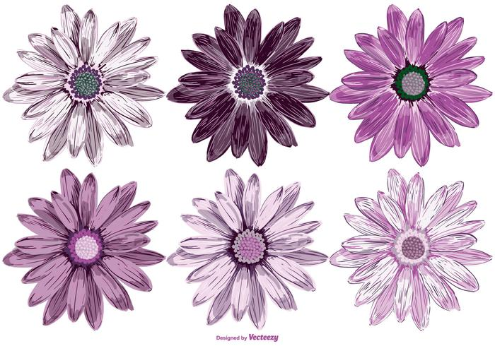Vector Flowers Collection