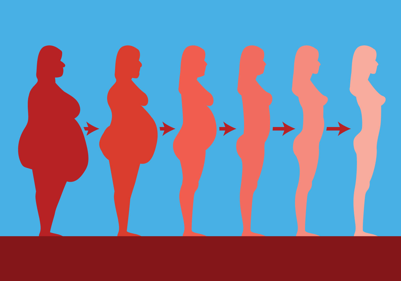 Slimming Vector Silhouettes - Download Free Vector Art ...