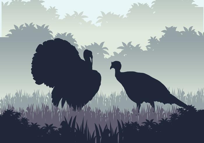 Wild Turkey Hunting Season