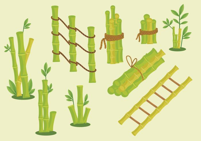 Green bamboo frame vector pack