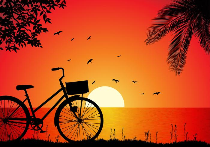 Bicicleta Beach Sunset Free Vector