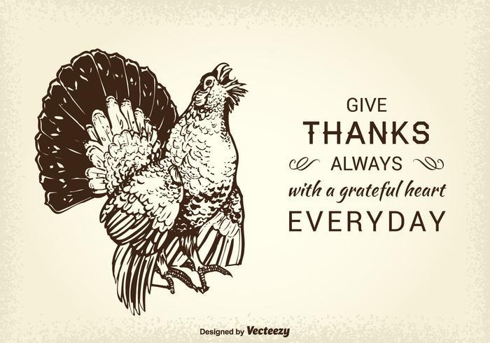 Tarjeta de vector libre de Acción de Gracias Turquía salvaje